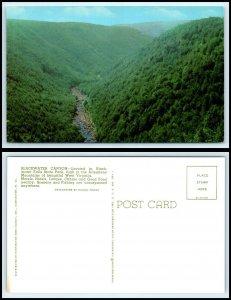 WEST VIRGINIA Postcard - Blackwater Canyon O10