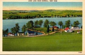 New York Hornell Loon Lake