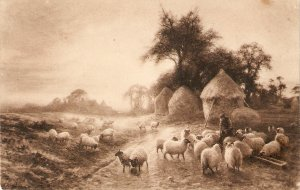Shepherd with his flock   Fine painting, old vintage English postcard