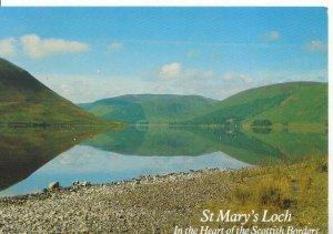 Scotland Postcard - St Mary's Loch - Heart of The Scottish Borders - Ref ZZ5583