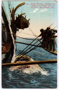 Sperm Whaling, Hoisting & Cutting, New Bedford Mass