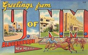 G44/ Albuquerque New Mexico Postcard Linen University Football Stadium Linen