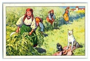 Corn, Romania, Hungary, Serbia, Nourishing Food, Echte Wagner Trade Card *VT31U
