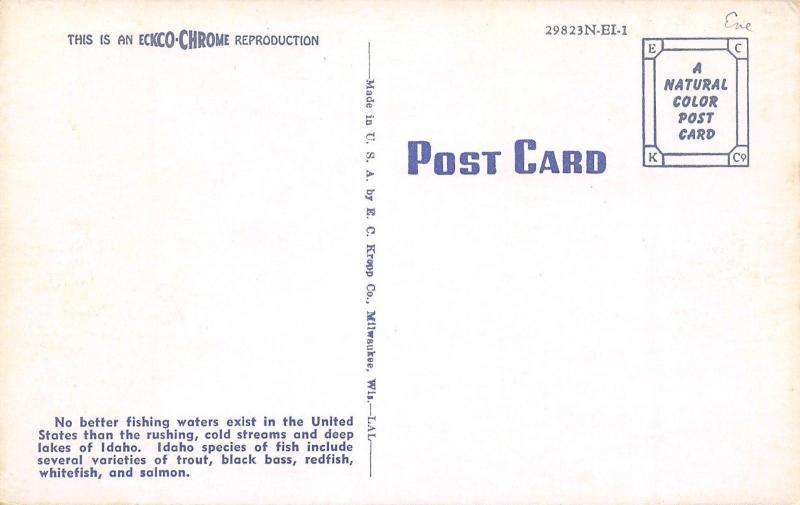 Idaho~River Rapids In Scenic Idaho The Gem State~1960 Postcard