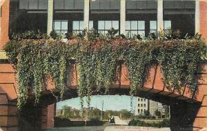 Dayton Ohio~Skywalk Bridge At National Cash Register Co~Close Up~1907 Postcard
