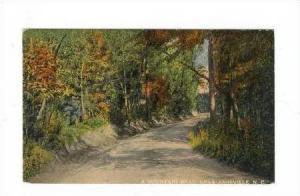 A Mountain Road, Near Asheville, North Carolina, 1912 PU