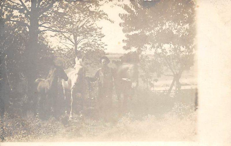 Black and White Photo of Horse Horse Unused real photo