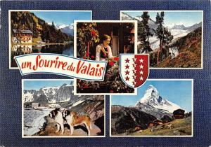 Switzerland Un Sourire du Valais multiviews Gasthaus Dog Chien Cabin Panorama
