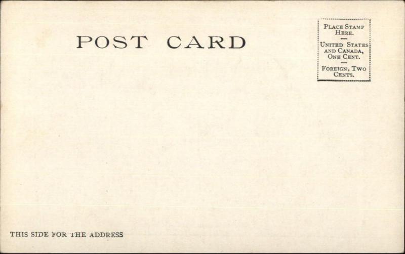 Picnic Romance Kissing DESSERT c1905 Detroit Publishing Postcard