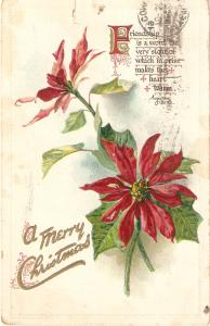 Poinsetial flowers.Message  Tuk Christma Seies PC # 506