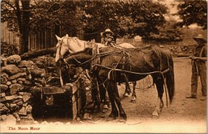THE NOON HOUR -  Horse Pulling Wagon - WATER - VINTAGE POSTCARD - PC