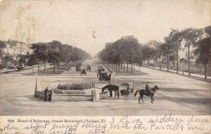 Chicago Illinois~Grand Boulevard~Head of Driveway~Horse at Drinking Trough~1909