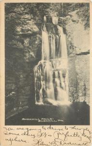 Bushkill Pennsylvania~Bushkill Falls~1906 UDB Postcard