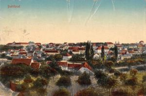 Bustehrad Czech Republic Birds Eye View Antique Postcard J77657