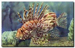 Old Postcard Aquarium Monaco Cliche Property exclusive Trabut Oceanographic M...