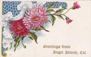 California Angel Island Greetings From Angel Island 1909