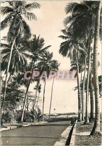 Modern Postcard Conakry Guinea La Corniche and the Lighthouse Boulbinet