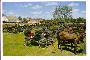 Mennonite Meeting House, Horses and Buggies, Kitchener-Waterloo, Ontario,