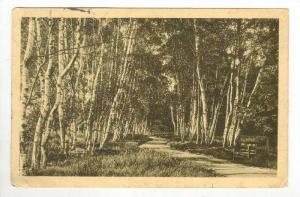 Westendpark, Franzensbad, Czech Republic, 1900-1910s
