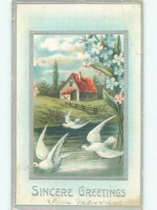 Divided-Back BIRDS SCENE Pretty Postcard AA9224
