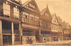 Watergate Street and Bishop Lloyd's Palace Chester
