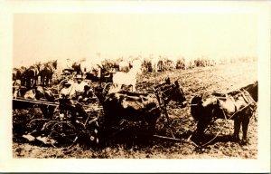RPPC Farming Scene Antique farming Equipment Mule Carts JJK Copy-Art Postcard