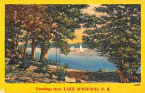 Lake Spofford New Hampshire Greetings From sailboats linen antique pc Z454692