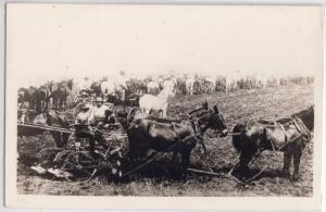 Teams Plowing a Field