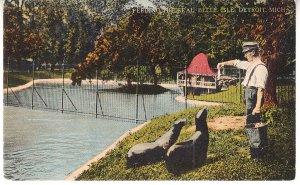 Feeding Seals - Belle Isle  Detroit, Michigan  1916