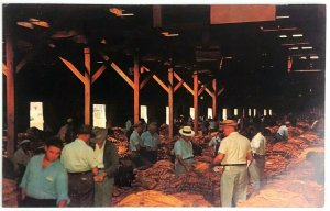 1950s North Carolina Tobacco Warehouse Auction Sale Postcard Loose Leaf Air Cure