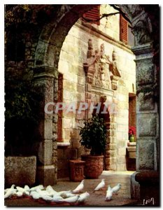 Modern Postcard The French Riviera a miracle of nature Les Colombes white Sai...