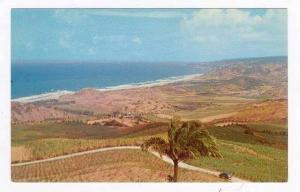 Cherry Hill View, St Peter, Barbados, 40-60s