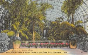 Cincinnati Ohio 1940s Linen Postcard Palm House Irwin M Krohn Conservatory Park