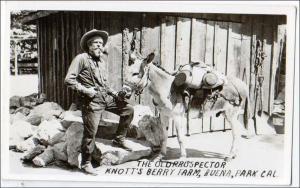 RPPC, Old Prospector, Knott's Berry Farm, Buena Park CA