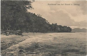 Dutch Indonesia Bosrand aan het strand te Sabang 03.92