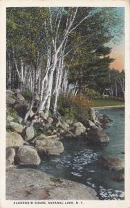 Birch Trees on Algonquin Shore - Saranac Lake, Adirondacks, New York WB