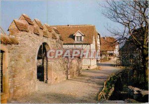 Postcard Modern Ungersheim (Haut Rhin) ?conomus?e Haute Alsace Alignment Spro...