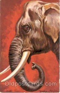 Elephant, Animal Unused