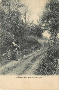 St Louis MO~Lady Gathers Stuff In A Basket, On A Country GrassLane~1906 PC