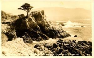 CA - Del Monte Coast, Midway Point Lone Cypress  - RPPC