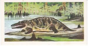 Trade Cards Brooke Bond Tea Prehistoric Animals No 3