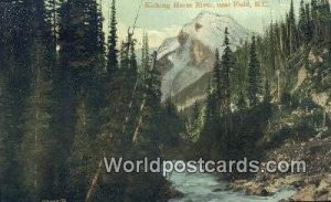 Kicking Horse River Field British Columbia, Canada Unused