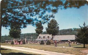 Dexter Lake Mohawk Golf Club Sparta New Jersey Postcard 204