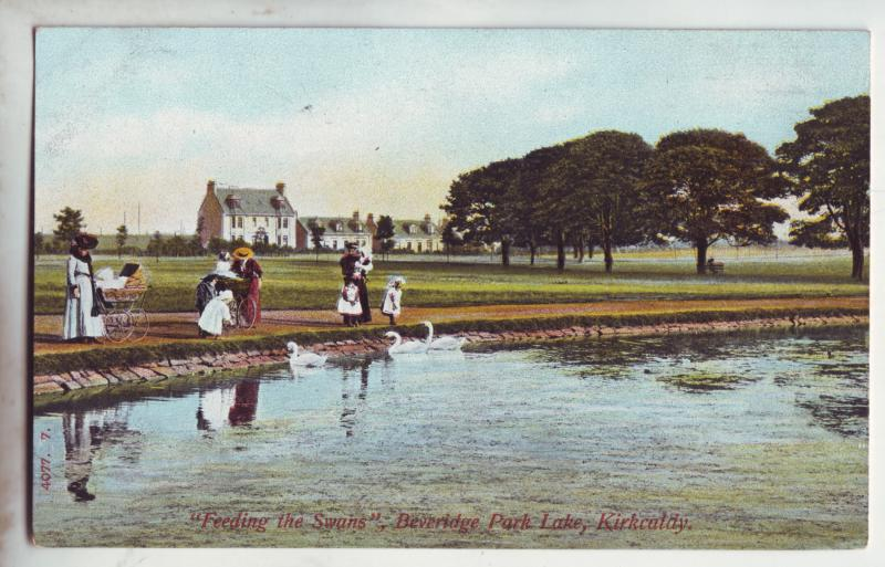 P902 old view card feeding the swans beveridge park lake kirkcatdy scotland