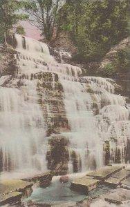 New York Watkins Hector Falls Albertype