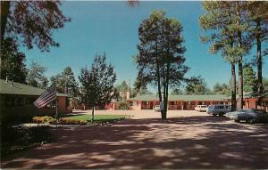 Payson Arizona~Diamond Dart Motel In the Pines~Shade from Trees 1960 Swenson