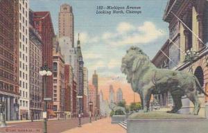 Illinois Chicago Michigan Avenue Looking North