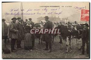 Old Postcard Folklore Auvergne At the fair Cows