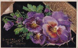 Sincere Birthday Wishes Pansies 1912 Mildred to Centerville KS Postcard B34