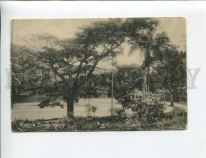 3174010 CEYLON KANDY Victoria Drive Vintage Tuck postcard